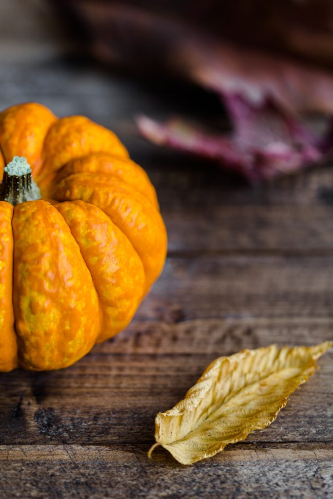 Autumn's Spice: Beloved pumpkin flavor shows no sign of slowing down